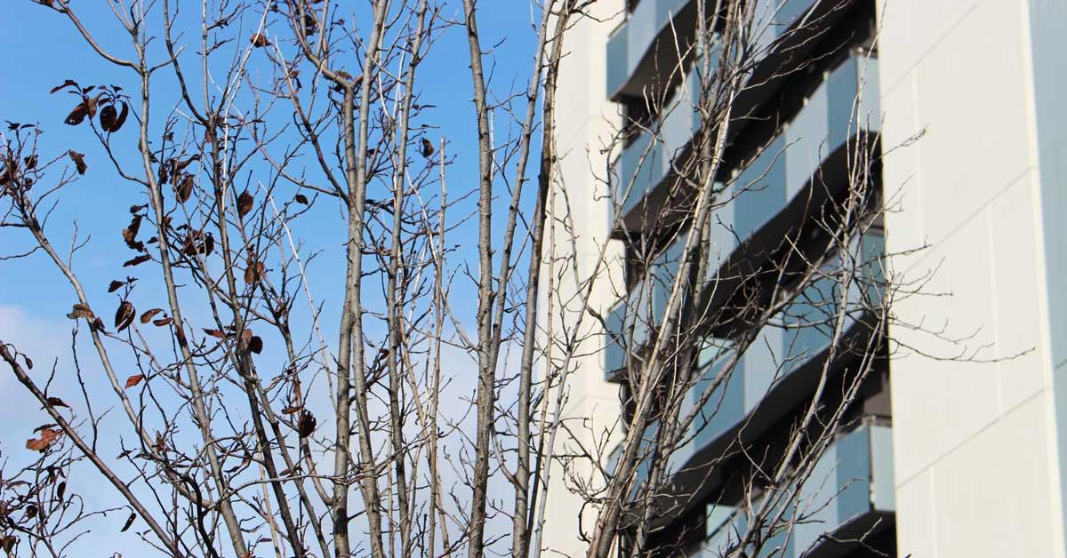 Cerramientos Para Edificio De 90 Viviendas En L'Hospitalet De Llobregat